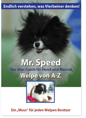 Mr. Speed - Welpe von A - Z - © www.lucky-dog.at